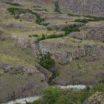 Pflanzenbänder am Berghang