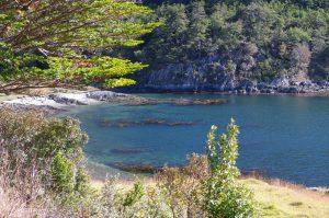 Farbenspiel im Parque Nacional – IMpressionen IV
